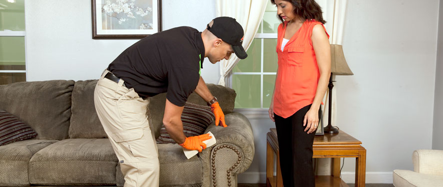 Rocky Mount, NC carpet upholstery cleaning