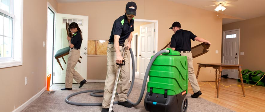 Rocky Mount, NC cleaning services